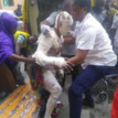 Photos: 2 died, 23 others rescued from gas explosion at Agegunle – LASEMA