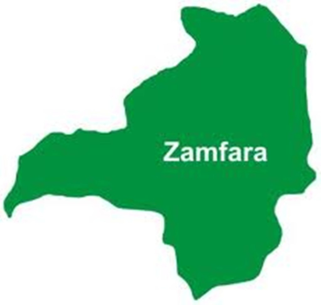 FG donates relief materials to over 2,000 IDPs in Zamfara — Commission