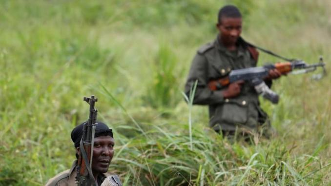 DR Congo's Virunga National Park hit by deadliest attack
