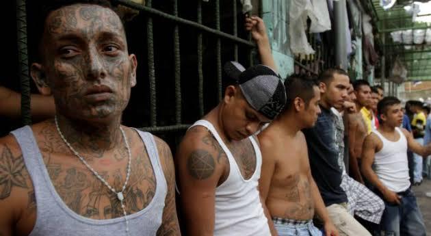 Gangs, Honduras