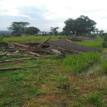 Property firm, family battle over Lekki land