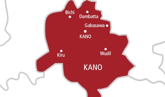 1,800 bags of fake, expired flour powder seized by KAROTA in Kano