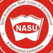 We can no longer cope with over taxation — NASU cries out