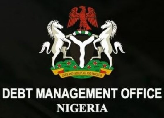 Foreign investors bought less Nigeria bonds last year: debt office