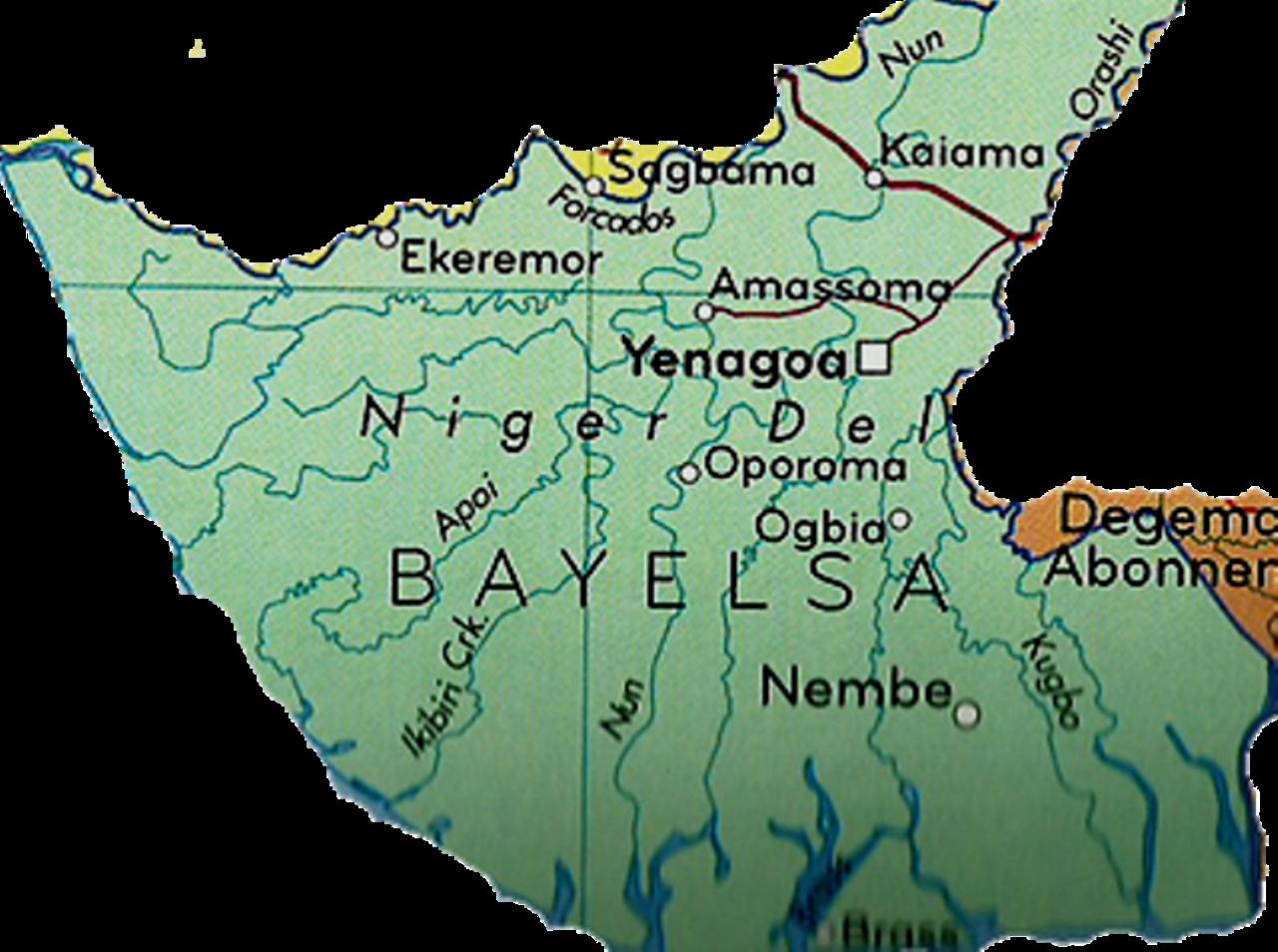 Bayelsa community seeks govt. intervention as criminals sack settlement