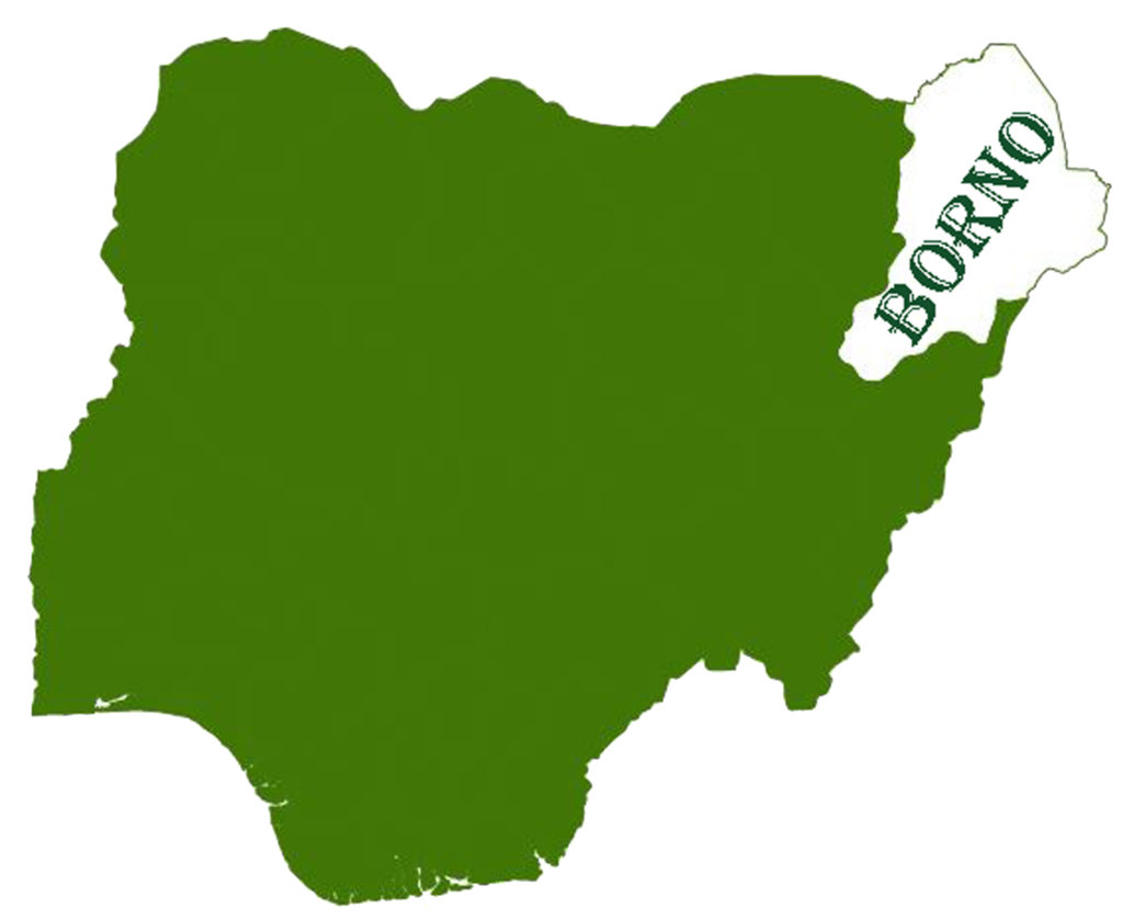 Borno farmers killings