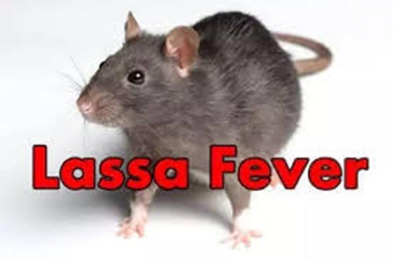Kaduna confirms new case of Lassa Fever