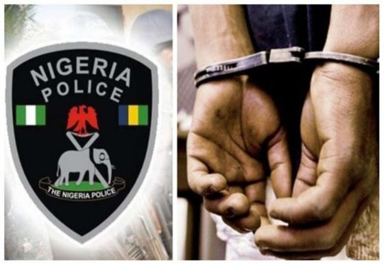 Police arrest 1,527 kidnap suspects, recover 2,037 firearms in 2019 — I-G