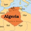 Algeria says public companies lost over $1bn due to coronavirus