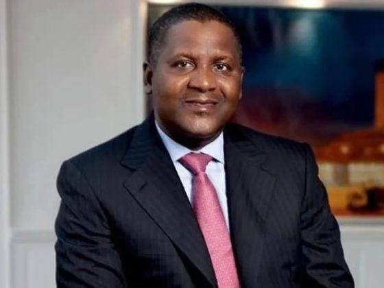 Dangote Group invests N63bn in South-East economy — Nneji