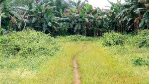 Enugu Communities enraged over acquisition of Ancestral Lands for Varsity