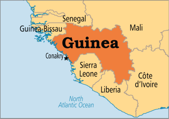 Guinea to vote on new constitution after months of unrest