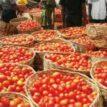 Lockdown: Baskets of tomato, pepper flood Oyo markets, no buyers