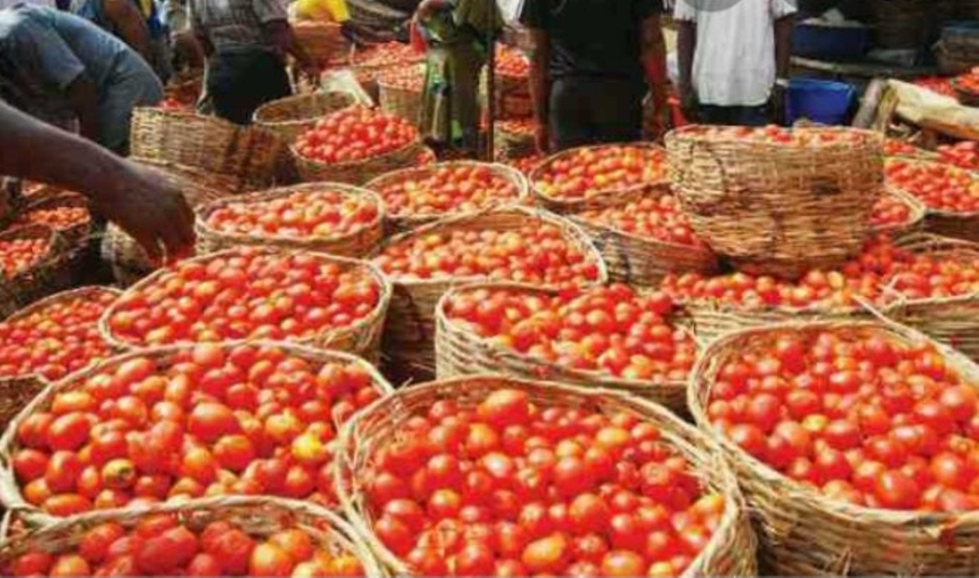 Mile 12 Market: How food blockade affected prices of tomato, pepper, onion