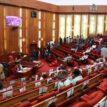 Senate passes 2021-2023 MTEF/FSP