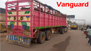 A trailer loaded with cow and about forty people coming from Zamfara state arrested at the Berger end of Lagos-Ibadan expressway, May 4, 2020. PHOTO: Lamidi Bamidele