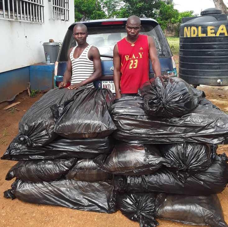 NDLEA arrest man for drug trafficking in Edo