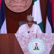 Buhari appoints Azi new chairman of IST