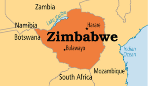 Zimbabwe top security officials dismiss coup reports