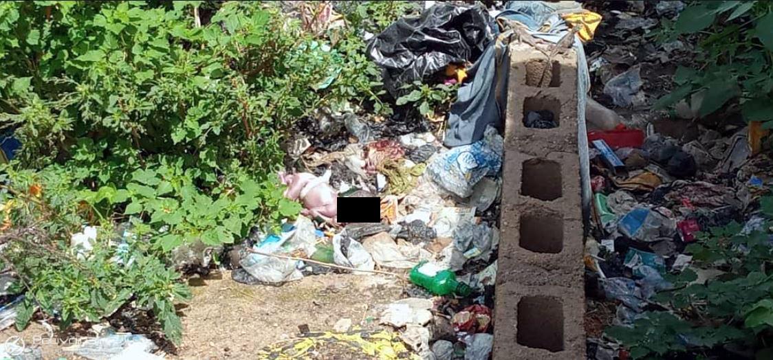 Rotting baby found in Bauchi dumpsite
