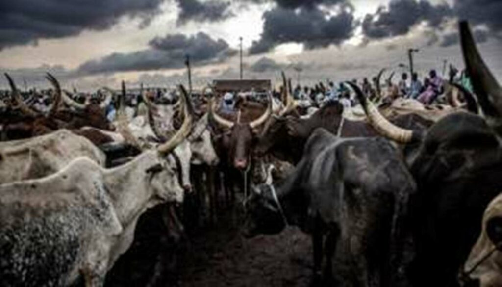 Clashes over cattle leave 16 civilians dead in South Sudan