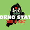 Borno govt closes 2 Colleges of Education over unrest