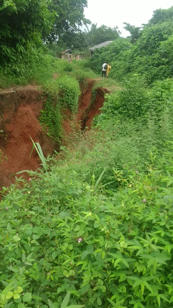 Gully erosion swallows Imo community