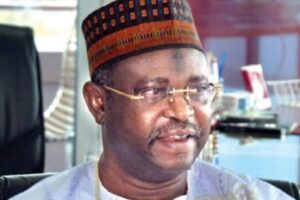 Na'Abba's DSS invitation: Linkage to Buhari 'just a publicity stunt' ― Presidency