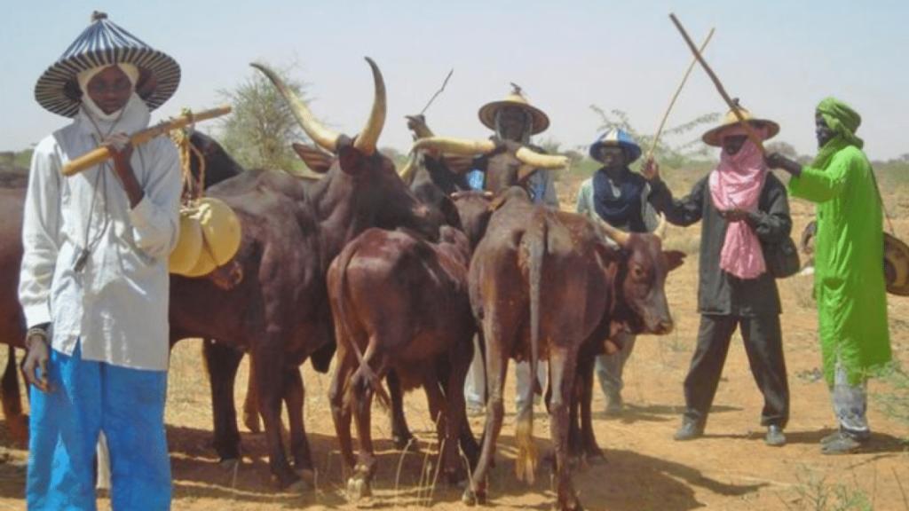 Gunmen kill two Miyetti Allah cattle breeders' leaders in Nasarawa