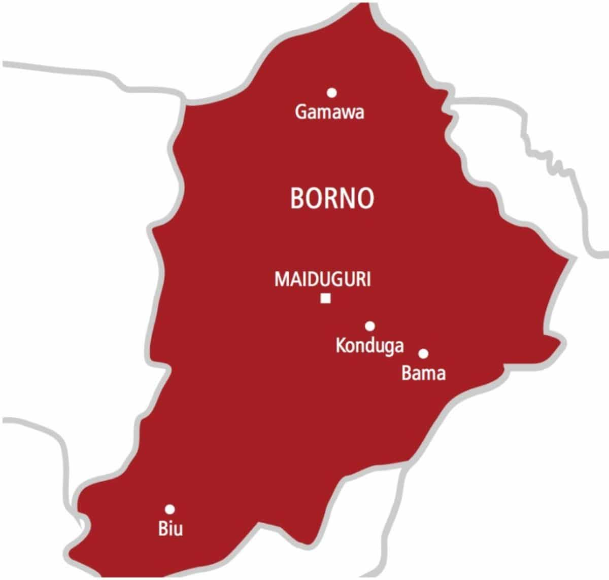 Borno rice farmers, governors