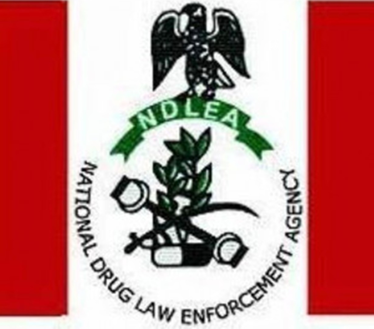 NDLEA boss warns personnel against hostage arrest, illegal detention