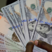 ABCON warns forex speculators as CBN sustains dollar sales to BDCs