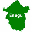 Pharmacists Council of Nigeria seals 301 medicine shops in Enugu