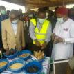 Level of unemployment in Nigeria unacceptable, alarming ― Ogbonnaya Onu